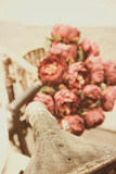 Roses on Bicycle Photographic Print by Steve Allsopp