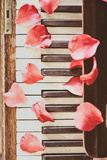 Red Petals on a Piano Photographic Print by Steve Allsopp