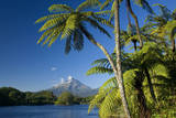 Mount Egmont Lake, Tree Ferns and Perfectly Cone-Shaped Photographic Print
