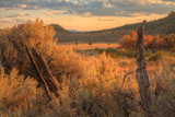 Southern Utah Roadside Scene Photographic Print by Vincent James