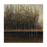 Calm Reflection Giclee Print by Timothy O'Toole