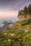 Sunset at Patrick's Point, Northern California Photographic Print by Vincent James