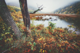 Misty Foggy Morning at The Tarn, Acadia National Park Photographic Print by Vincent James