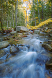 Jordan Stream Flowing in Autumn, Maine Photographic Print by Vincent James