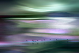 Migrations - Green Sky Photographic Print by Ursula Abresch