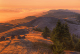 Golden Sunset Burn at Mount Tamalpais, Marin County Photographic Print by Vincent James