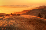 Anticipation of Sunset, Mount Tamalpais Photographic Print by Vincent James