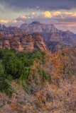 Outside Zion (Portrait) Southern Utah Photographic Print by Vincent James