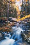 Jordan Stream in Autumn - Bar Harbor, Maine Photographic Print by Vincent James