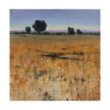 Distant Havenfield Giclee Print by Timothy O'Toole