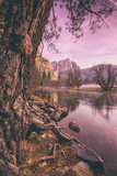 Early Morning Yosemite Falls Reflection, Yosemite Valley Photographic Print by Vincent James