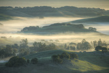 Spring Hills and Morning Fog, Petaluma, California Photographic Print by Vincent James