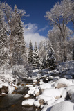 Usa, Colorado, Winter Landscape Photographic Print by John Kelly