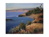 Bay VIew Giclee Print by Timothy O'Toole