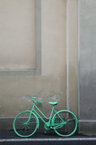 Green Painted City Bike Propped against a Wall Photographic Print by Andrew Bret Wallis