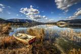 In the Reeds, Izmir, Turkey Photographic Print by Nejdet Duzen