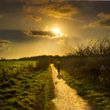 Evening Path Photographic Print by Adrian Campfield