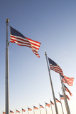 Usa, Washington Dc, Low Angle View on American Flags Photographic Print by  Fotog