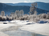 Early Morning, Yampa River, Steamboat Springs Photographic Print by Karen Desjardin