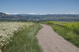 Pathway Overlooking Boulder, Colorado Photographic Print by John Kieffer