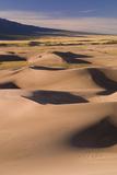 Great Dunes Photographic Print by Daniel Cummins