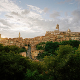 View of Siena Showing the Duomo Santa Maria Dell' Assunta Cathedral and the Torre Del Mangia, Siena Photographic Print by Cultura Travel/Philip Lee Harvey