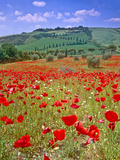 Val D'orcia Tuscany Itlay Photographic Print by Kathy Collins