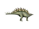 Stegosaurus Dinosaur Prints