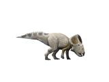Protoceratops Dinosaur Print