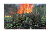 A Pair of Albertaceratops Running Away from a Forest Fire Prints