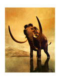 A Woolly Mammoth in a Dramatic Frozen Sunset Poster