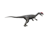 Dilophosaurus Dinosaur Posters