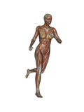 Muscular Woman Running Prints