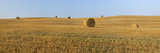 Harvested Wheat Field with Bales of Hay. Photographic Print by Martin Ruegner