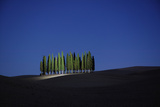 Italy, Toscana, San Quirico D'orcia, Cypress Trees Photographic Print by Roine Magnusson