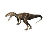 Eustreptospondylus Dinosaur Art