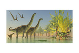Deinocheirus Dinosaurs Watch a Group of Argentinosaurus Walk Through Shallow Waters Prints