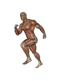 Muscular Man Running Prints