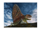 Dimetrodon Was an Extinct Genus of Synapsid from Th Early Permian Period Prints