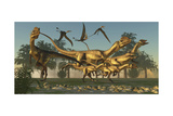 A Pack of Dilophosaurus Dinosaurs Hunting for Prey Posters