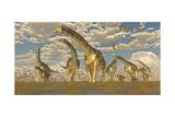 Hypsilophodon and Pteranodon Dinosaurs Accompany a Herd of Argentinosaurus Posters