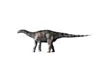 Dicraeosaurus Dinosaur Posters