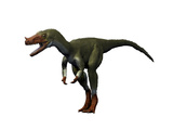 Proceratosaurus Dinosaur Prints