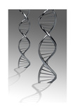 Conceptual Image of Dna Poster