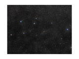 Delphinus Is a Constellation in the Northern Sky Posters