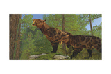 Two Saber-Toothed Cats Search for Prey in a Pine Forest Art