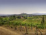 Skyline of San Gimignano Photographic Print by Tjarko Evenboer / The Netherlands