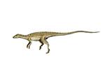 Scutellosaurus Dinosaur Print