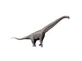 Sauroposeidon Dinosaur Prints