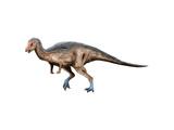 Dryosaurus Dinosaur Poster